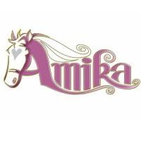 Amika Feestpakket
